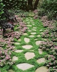 Summer Inspirational Garden
